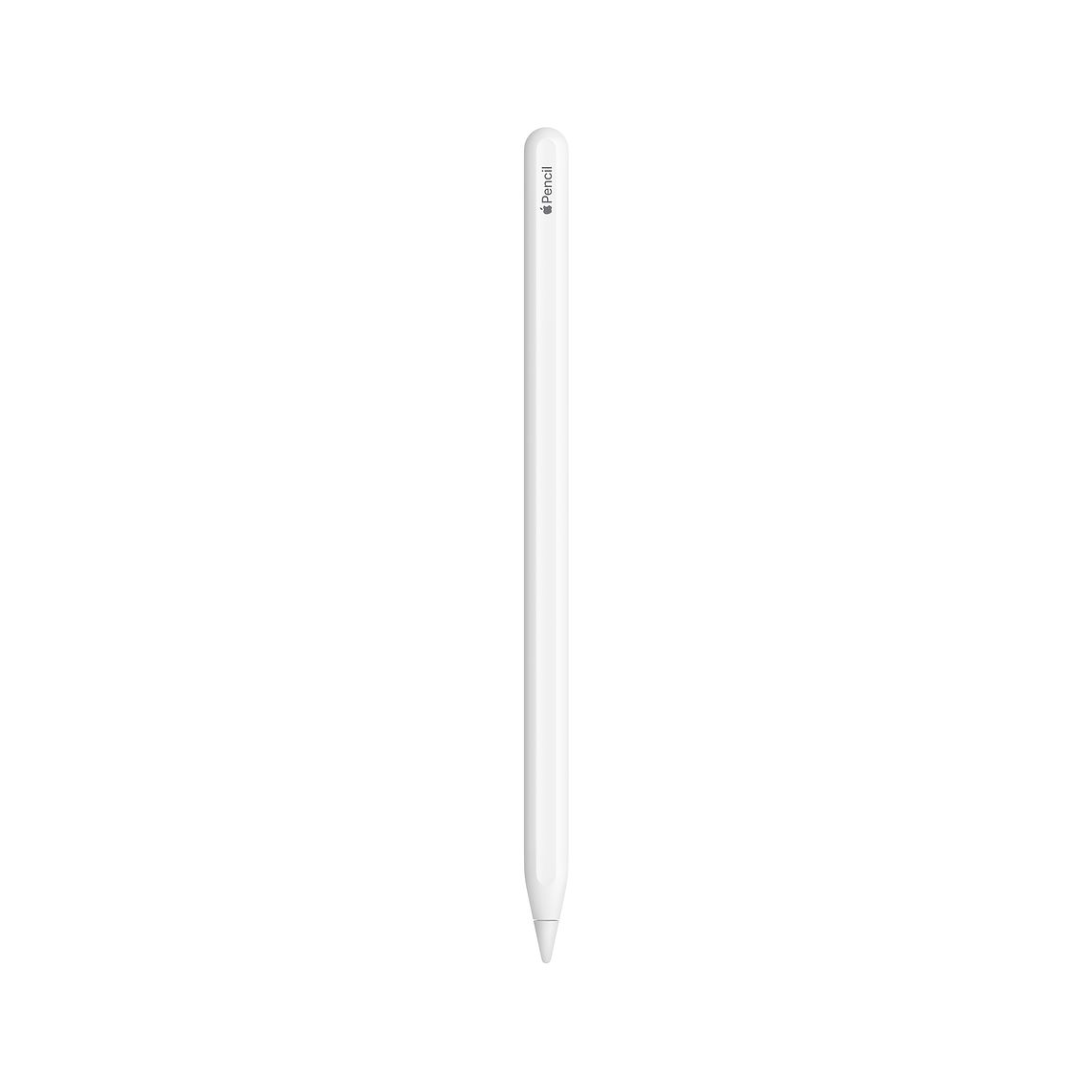 Apple Pencil (2nd Generation) at Small Dog Electronics